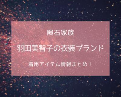 隕石家族で羽田美智子さんが着用している衣装の参考画像