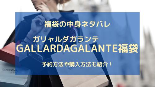 GALLARDAGALANTEガリャルダガランテ福袋の中身ネタバレについての参考画像